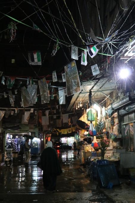 Baddawi Dec2016- Jan2017 007 (3)